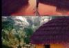 Hairy Shack