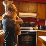 Pet <b>Bobcat</b>