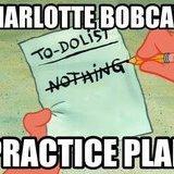 <b>Bobcats</b> Practice Plan