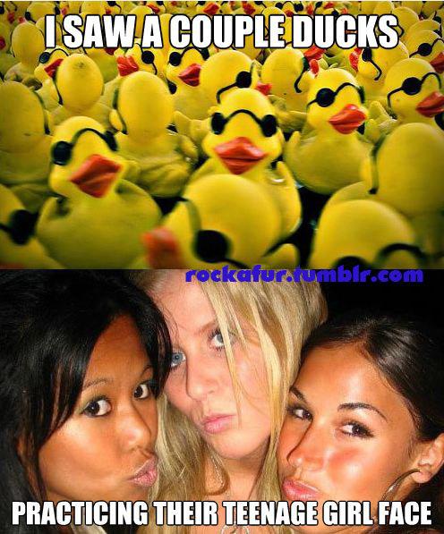 A couple ducks. . funny lol lmao l