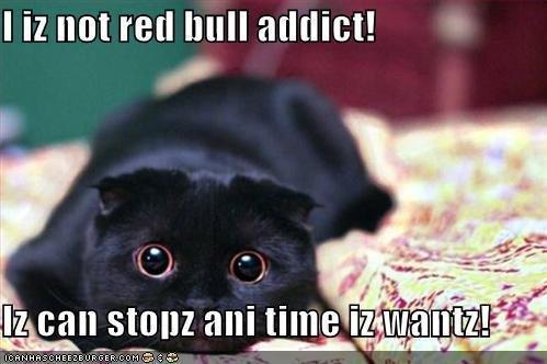 Addict. this describes my studio teacher soooo well. lol Cats red bull