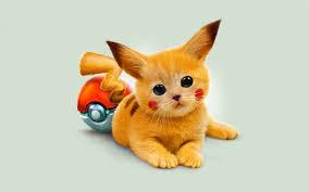 adorable kitty. .. But pikachu is a mouse. Pokemon cat Kitten PIKACHU Cute pokeball
