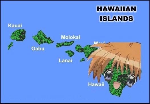 Am I Not Hawaii-Desu?. Let's here all those bad anime puns =DDD. HAWAIIAN. Hawaii is lookin pretty kawaii hawaii desu