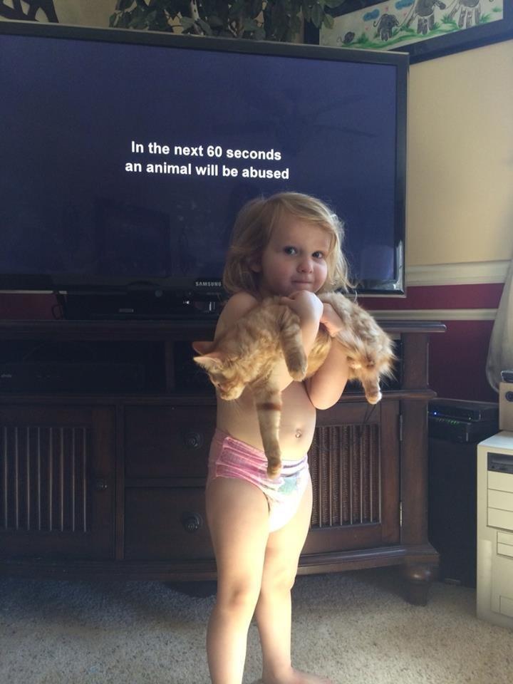 Animal abuse. . Animal abuse