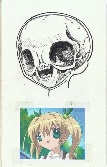 anime skull. . anime skull