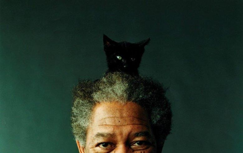 Anyone have Morgan Freeman wallpapers?. .. morgan freeman is the worst actor ever Morgan Freeman