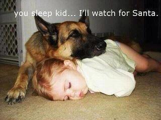 awwwwwww. cute ness levels off the charts. Dog baw aw Cute children Santa