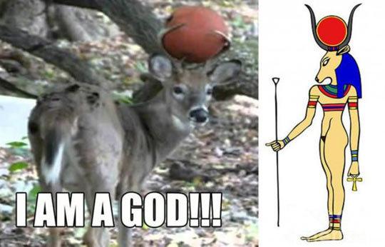 Deer god. .. i am your deer God now! Deer god i am your deer God now!