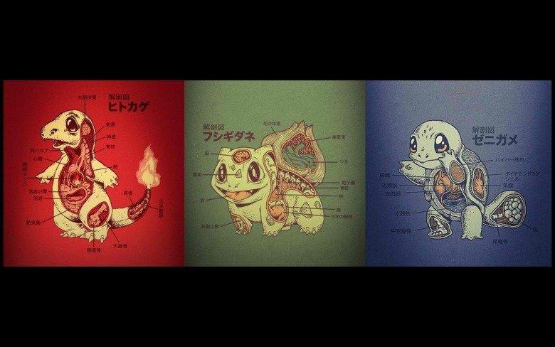 Dissecting pokemon. damn i wish this was in english. Pokemon