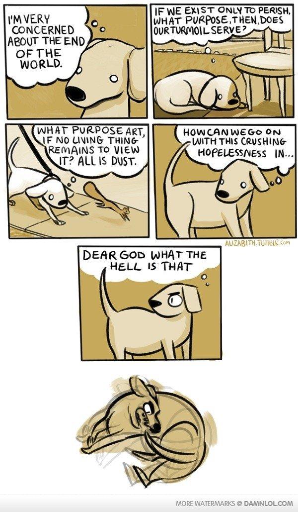 dog boner. . SEE ? tii iloilo want PURPOSE mar, ' an HOPELESSNESS m... MORE ©. was getting deep. dog boner SEE ? tii iloilo want PURPOSE mar ' an HOPELESSNESS m MORE © was getting deep