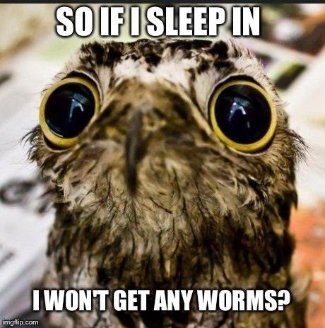 Early bird gets the worm. . I WUNT MW Early bird gets the worm I WUNT MW