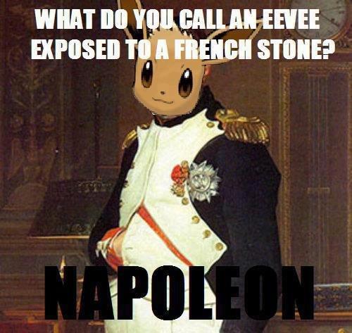 "Eevee's Final Evololution. Napoleon <3.. Napol-eon used ""Invade Russia"" The move failed. Adolf Hilter used ""Mimic Move"" The move failed again! Eevee's Final Evololution Napoleon <3 Napol-eon used ""Invade Russia"" The move failed Adolf Hilter ""Mimic Move"" again!"