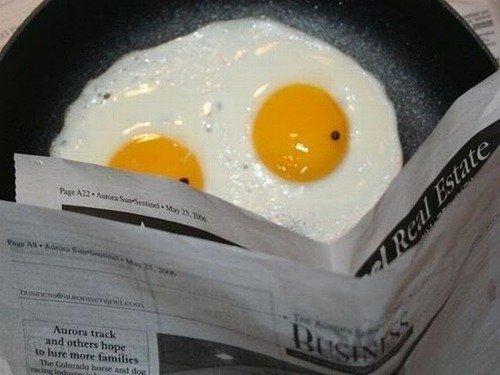 Eggscellent news. . Eggscellent news