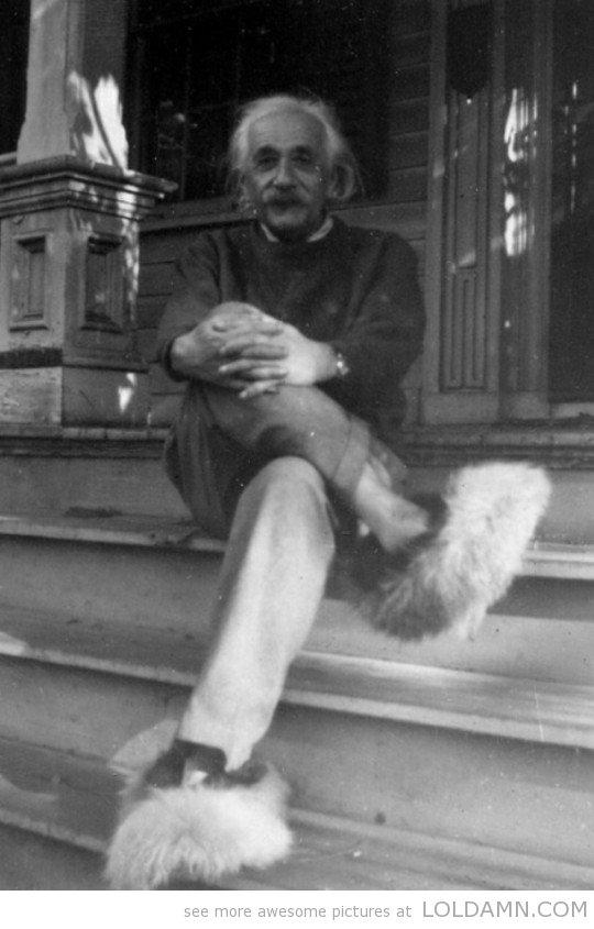 Einstein in fuzzy slippers. .. they match his hair Einstein slippers cool fuzzy scientist