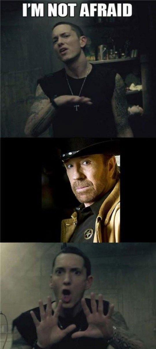 Eminem is Afraid. Eminem is afraid of Chuck Norris. I' M NIH. Repost eminem is afraid