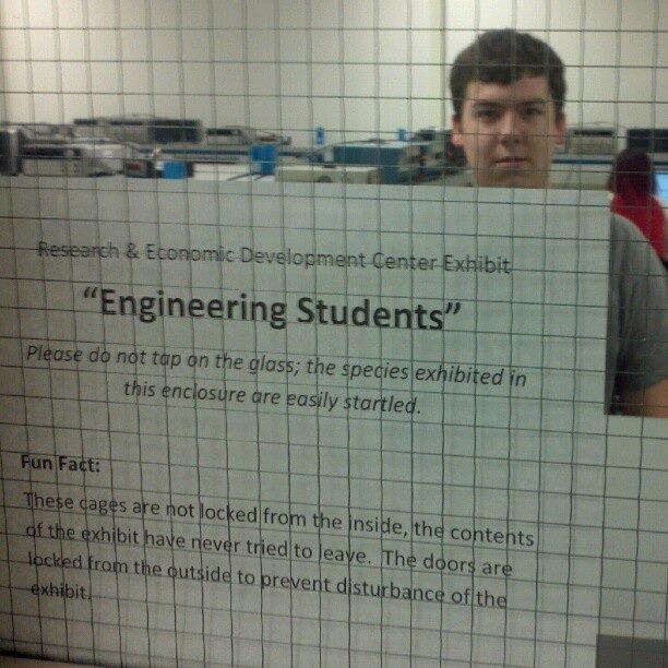 Engineers. They're like ANIMALS....... Somebody say Engineers? Engineers They're like ANIMALS Somebody say Engineers?