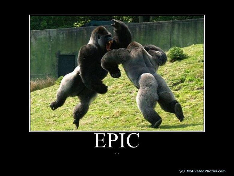 Epic gorilla. . lo/ Ma titrated ntnu. cu::. Looks like... There's an immanent case of.. puts on sunglasses Guerilla warfare... YEEEEEAAAAHHHH Epic gorilla lo/ Ma titrated ntnu cu:: Looks like There's an immanent case of puts on sunglasses Guerilla warfare YEEEEEAAAAHHHH