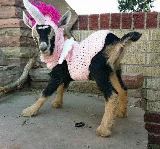 Excuse Me While I Look Fabulous. Excuse Me While I Look Fabulous via . funny