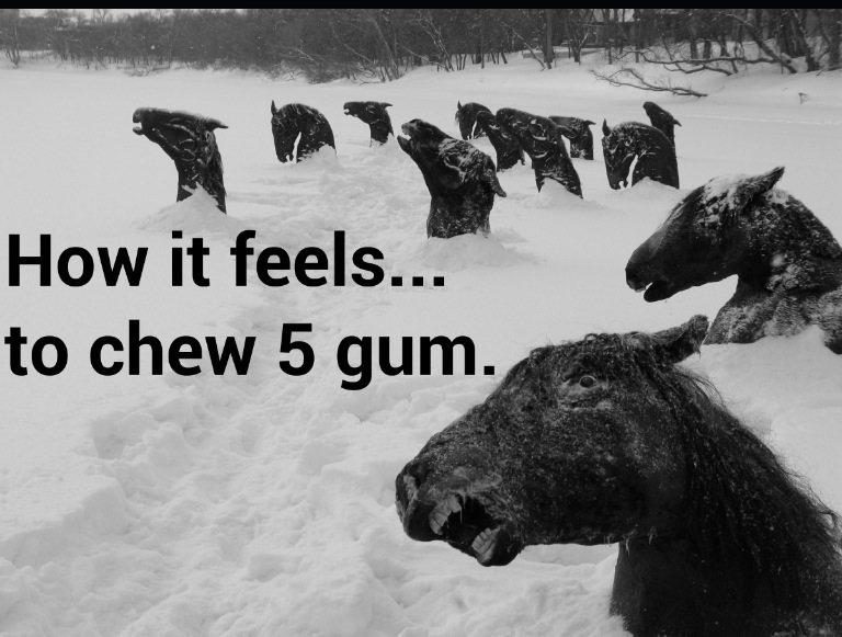 Experience.... The flavor. ll i ill Itll f lit i! . How it feels... to chew 5 gum. I'll. dem paint skills freeze ponies freeeezeeee