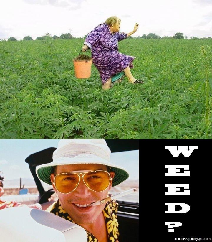 Happy granny!. . weed johnny depp granny