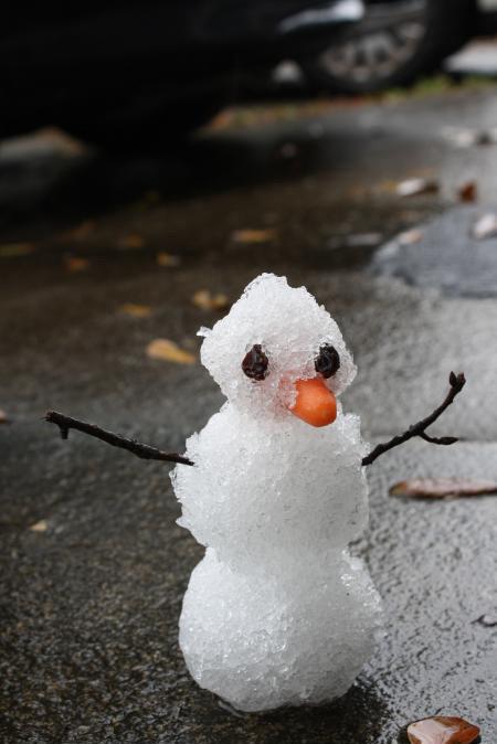 HEADLINE: 1st Snowman created in Florida. 1/29/2014 NEVA FORGET!!!.. We must bring summer back! Florida Man 1st