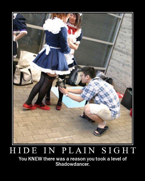 hide in plain sight. . hide in plain sight