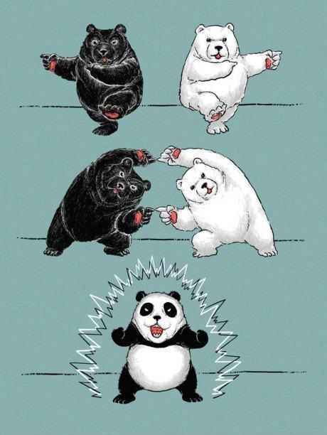 How pandas were born. tags are ninja. How pandas were born tags are ninja