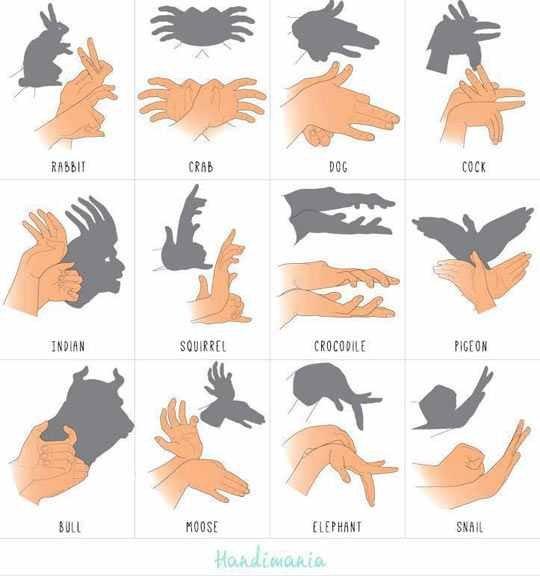 how to hand shadow like a boss. . how to hand shadow like a boss