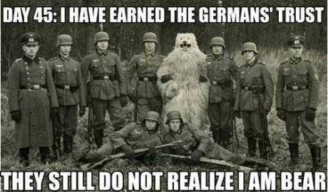 I am Bear. Silly germans. mgsv' snu HM new I am Bear Silly germans mgsv' snu HM new