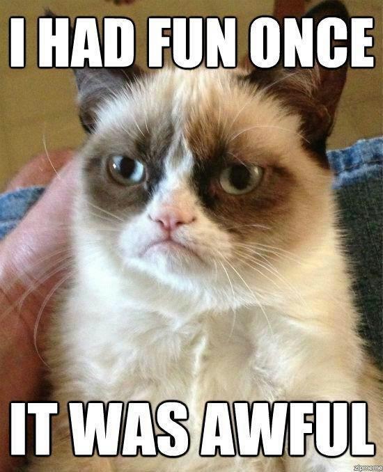 I had fun once... Found on the interwebs! Enjoy <3. kitty fun