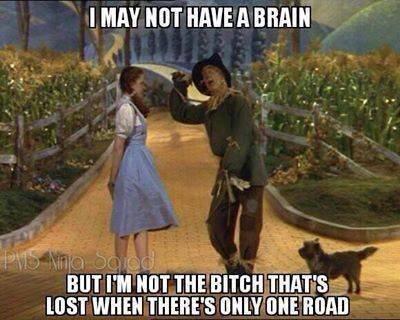 I may not have a brain. I may not have a brain, but.... I IMT MT HOUE H Mollit. my wizard of oz funny humor pics Brain