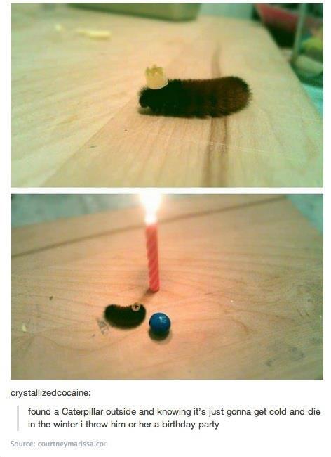 I threw him a birthday party.... .. This brings brings a tear to my eye. I don't know why. i threw Him a Birthday Party haha funny lol tumblr