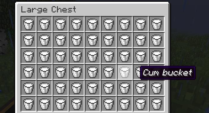 .... I was wandering around on my friends server and found this chest.. Minecraft Cum buckets