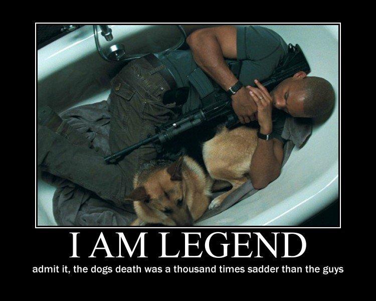 i am legend. 100% OC <br /> made it after seeing alot of i am legend pics. I, t) j) sjf LEGEND admit it, the dogs death was a thousand times sadder than t i am legend 100% OC <br /> made it after seeing alot of pics I t) j) sjf LEGEND admit the dogs death was a thousand times sadder than t