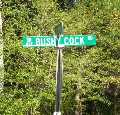 I seriously wonder. who named this road...... hweaqhgtrwnh