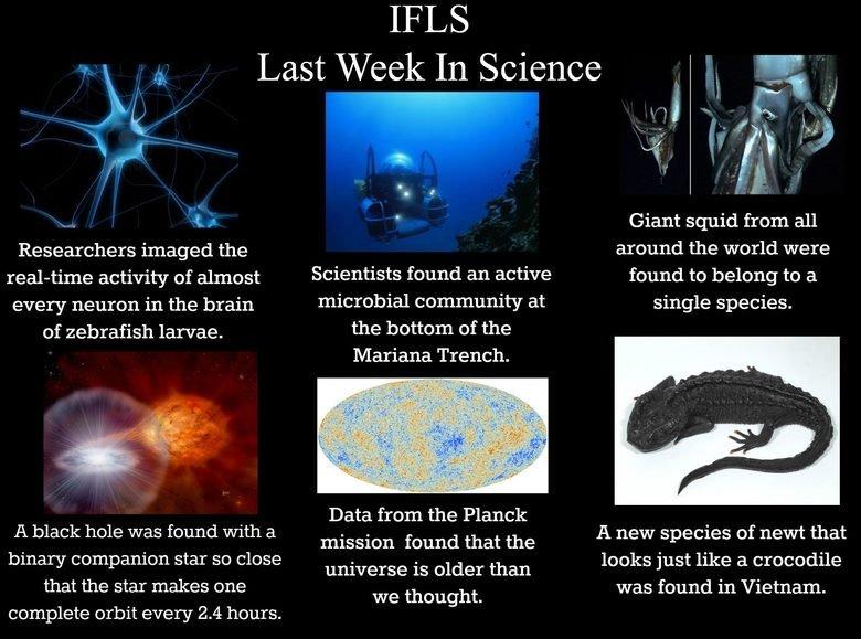 IFLS. www.facebook.com/IFeakingLoveScience.. So what... 7, maybe 8,000 years? IFLS www facebook com/IFeakingLoveScience So what 7 maybe 8 000 years?