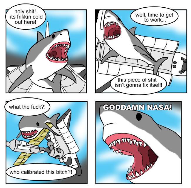 I'm a shark. . holy shit! its trekkin cold . this piece ohshit isn' t gonna fix itself! ILT,. I'M A SHAAARK I'M A SHAAARK SUCK MY DIIICK I'M A SHAAARK Shark NASA