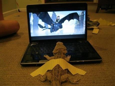 imagine dragons. .. <somewhat relevent imagine dragons <somewhat relevent