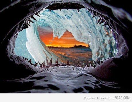 Inside a shark. Inside a shark inside a wave at sunset Found on 9gag. inside Shark