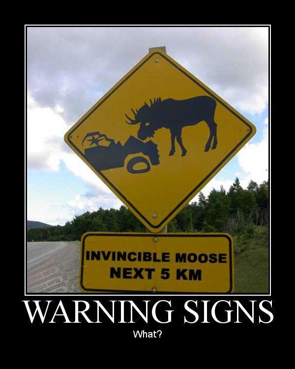 Invincible moose?. . lfi;. 19-2000 anyone? Invincible moose? lfi; 19-2000 anyone?