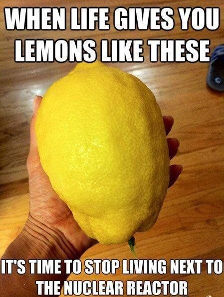 Lemons. . wuss HIE muss. but will it combust? Lemons wuss HIE muss but will it combust?