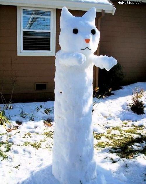 LONG SNOW CAT. LONG SNOW CAT OS LONG!!!!! VERY LONG INDEED!!!. longcat Long cat snow cat