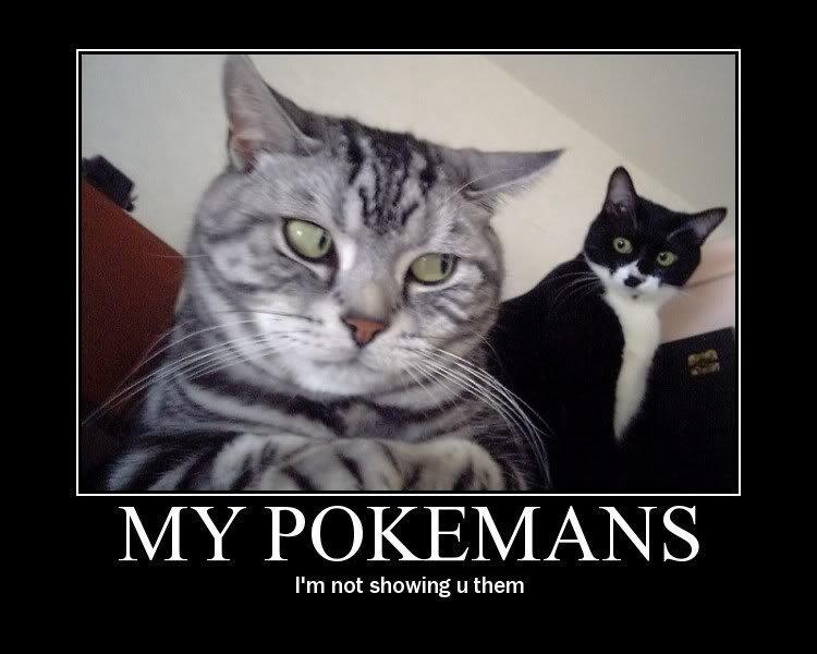 Mah pokemonz. Just sharing lulz, sorry if retoast . Pokemon lolcat