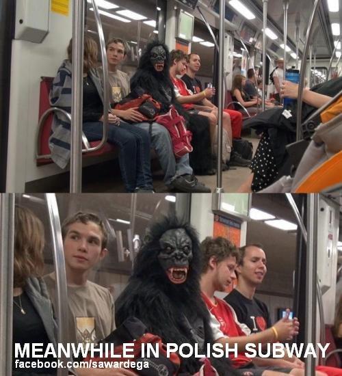 Meanwhile in Poland. Meanwhile in Polish subway. In POLISH. sud. ale skurwiel. to jest prawdopodobnie w warszawie. bambusy tam zawsze są. Meanwhile in Poland Polish subway In POLISH sud ale skurwiel to jest prawdopodobnie w warszawie bambusy tam zawsze są