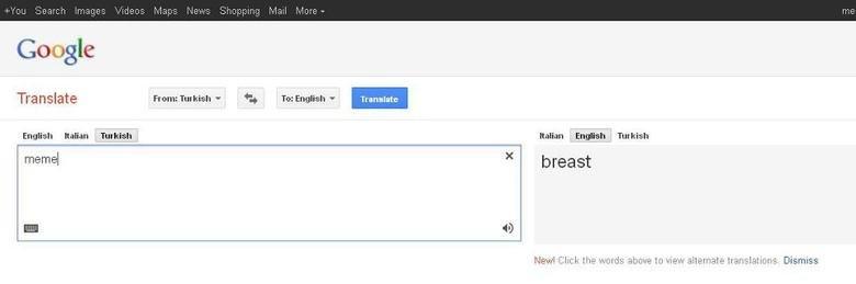 Meme. . Google Translate Fram: - l To. _ Ailien Etr. tanith Turkish breast Your mum has nic