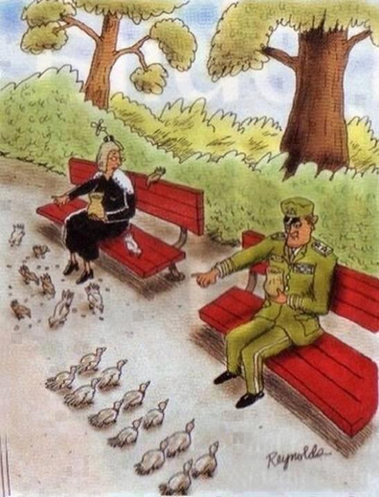 military discipline. hats off. military discipline hats off