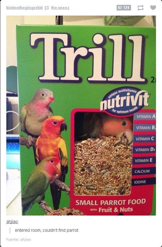 Missing Parrot. reward!.. trill over my floor budgie throws the shucks on the floor Missing Parrot reward! trill over my floor budgie throws the shucks on