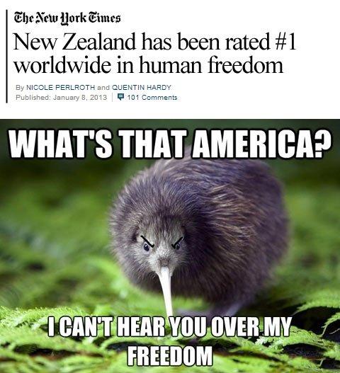 'murica. pandawhale.com/post/14438/kiwi-to-bal.... worldwide in human [ WHAT' S THE! potato