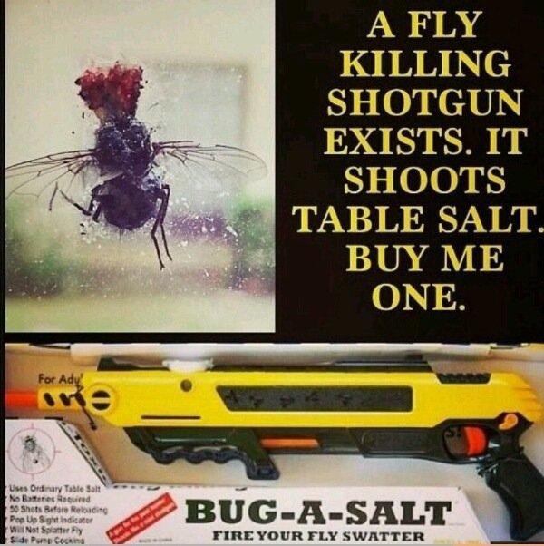 Must Haveee. SAUCE: www.youtube.com/watch?v=5SIg3WY8ehM Break Yo Self!. A FLY KILLING SHITTU? EXISTS. IT SHOOTS 1' lla. ' ial TABLE SALT. i. idiots BUY ME ONE.. A SALT gun you say? Salt shotgun bug a salt