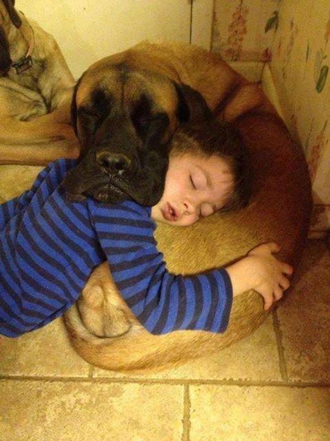 Mutual pillow. . Mutual pillow